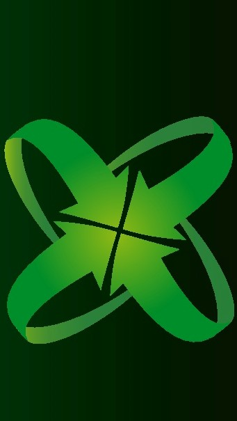 Boinnex logo