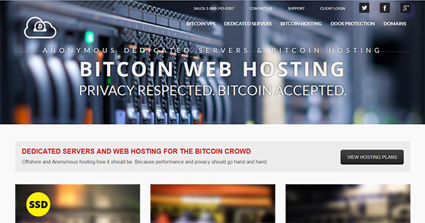 BitcoinWebHosting.net screenshot