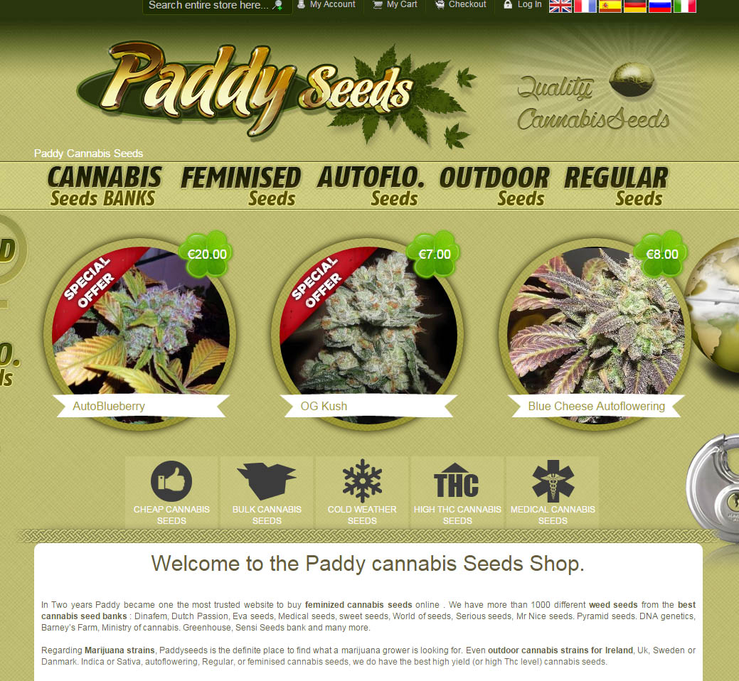 Cannabis Seeds Paddy screenshot